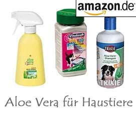 Aloe Vera für Haustiere