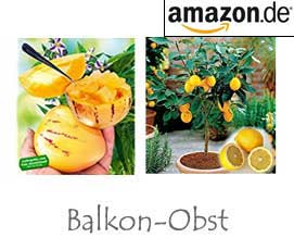 Balkon-Obst