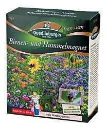 Wildblumenmischung