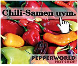 Chili Samen