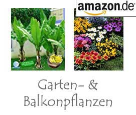 Balkon- & Gartenpflanzen