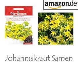 Johanniskraut Samen