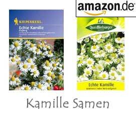 Kamille Samen