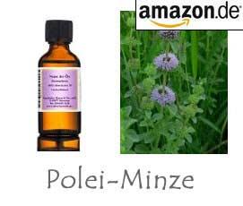 Polei-Minze