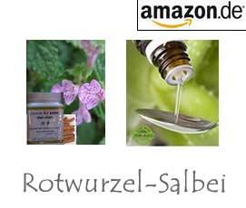 Rotwurzel-Salbei