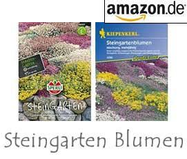 Steingarten - Blumen
