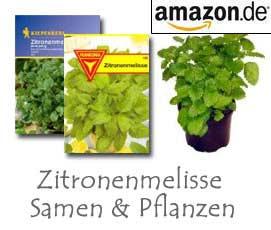 Zitronenmelisse Samen und Pflanzen