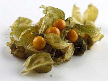 Physalis - Früchte - Kapstachelbeere / Andenbeere